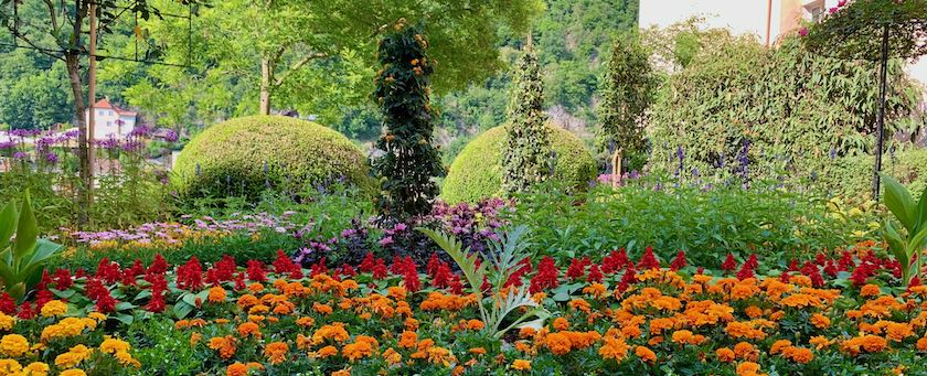 A nicely arranged flower bed (seen in Passau, Germany)