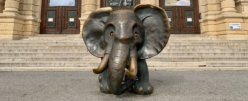Elephant sculpture (seen in front of the Natural History Museum Vienna)